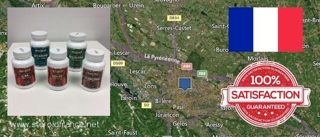 Buy Anabolic Steroids online Pau, France